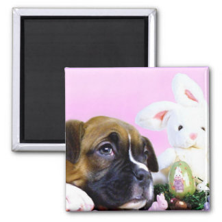 Easter boxer puppy and bunny magnet