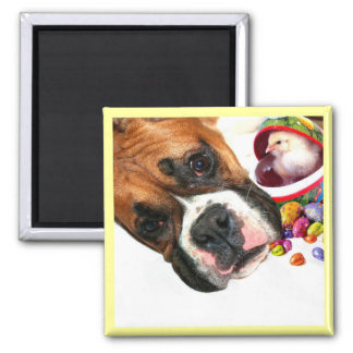 Easter Boxer puppy and Chick magnet