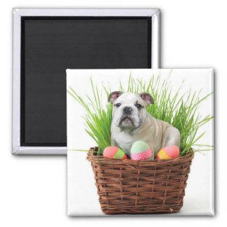Easter bulldog 2 inch square magnet