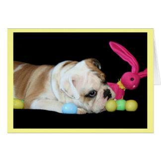 Easter Bulldog greeting card