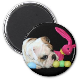 Easter Bulldog magnet