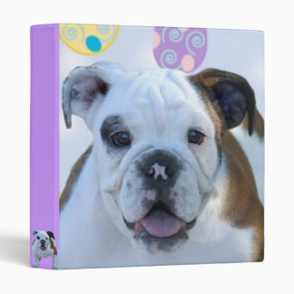 Easter bulldog puppy binder