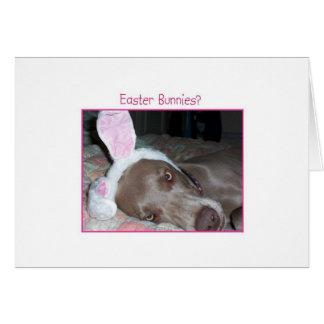 Easter Bunnies? Bah Humbug! Card