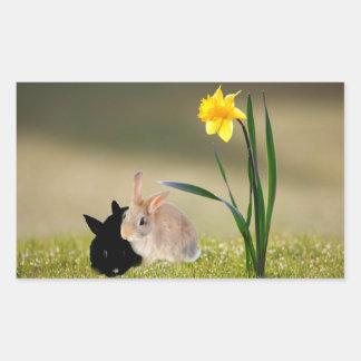 Easter bunnies rectangular sticker