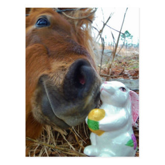 Easter Bunny and Brown horse Postcard