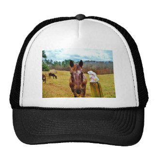 Easter Bunny and Brown horse Trucker Hat
