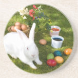 Easter Bunny And Colored Eggs Beverage Coaster