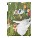 Easter Bunny And Colored Eggs iPad Mini Cover