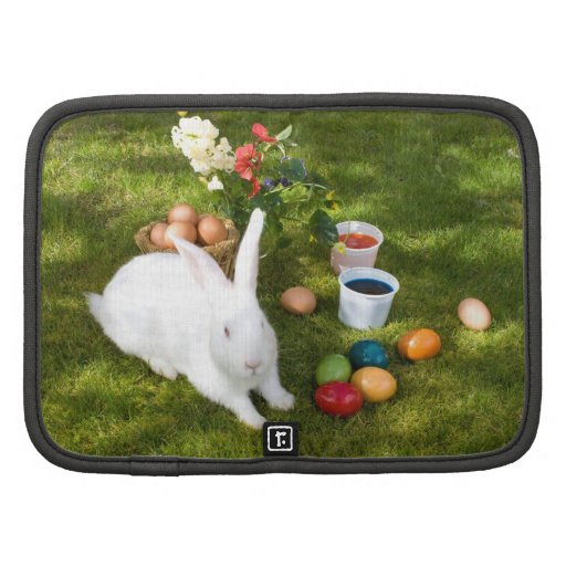 Easter Bunny And Colored Eggs Organizer