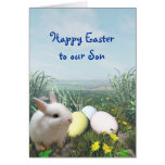 Easter Bunny and Easter Eggs Card for Son