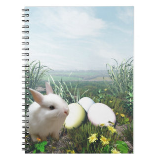 Easter Bunny and Easter Eggs Notebook