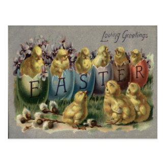 Easter Bunny Basket Colored Egg Sun Flower Field Postcard