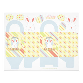 Easter Bunny Box Template Flyer