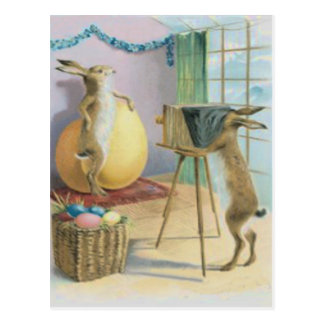 Easter Bunny Camera Photography Easter Colored Egg Postcard