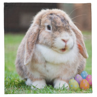 Easter Bunny Cloth Napkin