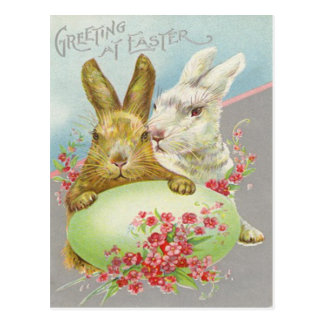 Easter Bunny Colored Egg Daisy Postcard