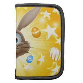 Easter bunny concept organizer