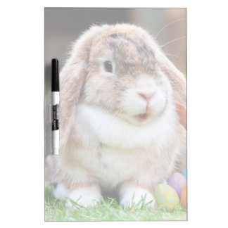 Easter Bunny Dry-Erase Board