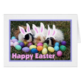 Easter Bunny Guinea Pig Card