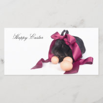 Easter Bunny Holiday Card