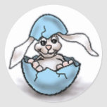 Easter Bunny in a Blue Egg Round Sticker