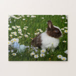 Easter Bunny In Daisy Field Jigsaw Puzzle
