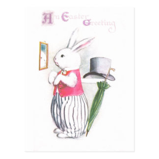 Easter Bunny in Pink Vest Checks Mirror Postcard