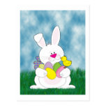 Easter Bunny in the Grass Post Cards