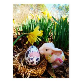 Easter Bunny kissing Cow Egg Postcard