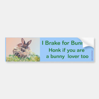 Easter Bunny or Nest Making Rabbit - Happy Easter Bumper Sticker