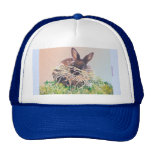 Easter Bunny or Nest Making Rabbit - Happy Easter Hats
