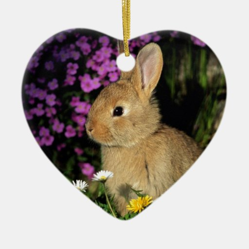 Easter Bunny Double-Sided Heart Ceramic Christmas Ornament