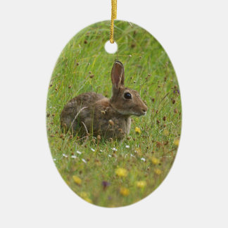 Easter Bunny Ceramic Oval Decoration
