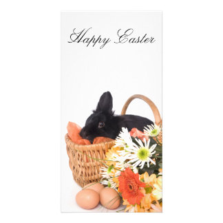 Easter Bunny Photo Card Template