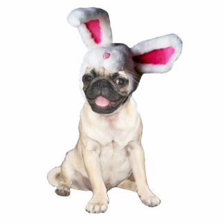 easter bunny pug photo cutout
