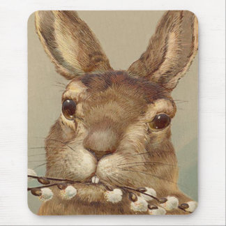 Easter Bunny Pussy Willow Floral Mouse Pad