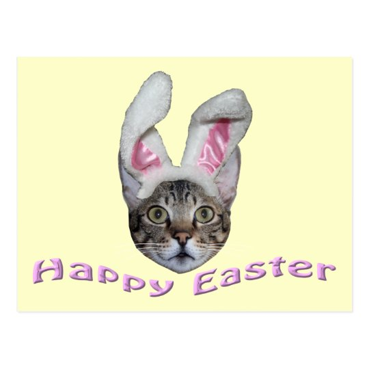 Easter Bunny Savannah Cat Postcard