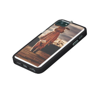 Easter Bunny walking iPhone 5/5S Covers