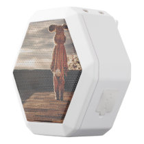 Easter Bunny walking White Bluetooth Speaker