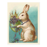 Easter Bunny With Green Egg Postcard