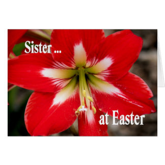 Easter Card for Sister with Red Lily