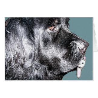 Easter Card,Newfoundland Dog