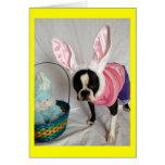 Easter Card with Boston Terrier Bunny