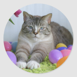 Easter Cat Classic Round Sticker