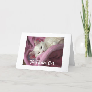 Easter Cat Holiday Card