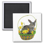 Easter Cat in Daffodils Bag Fridge Magnets