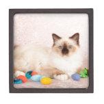 Easter Cat Keepsake Box