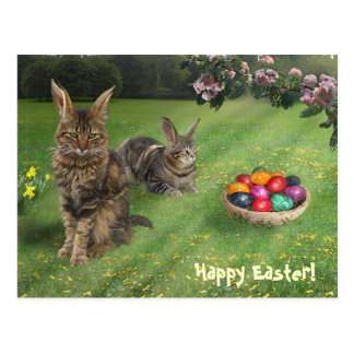 Easter cats ;-) postcard
