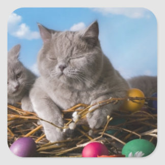 Easter Cats Square Sticker