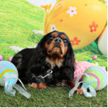 Easter - Cavalier King Charles Spaniel - Charlie Photo Cut Outs